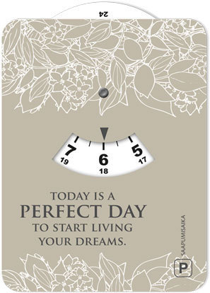 Parkkikiekko - Today is a perfect day